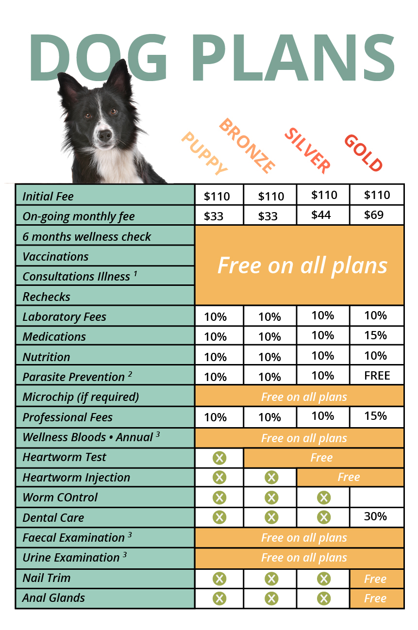 wellness plan, dog health, pet surgical care Frankston, pet hospital care Frankston, pet dental care Frankston, vet care Frankston